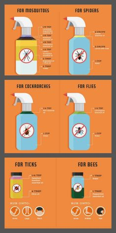 If You Do These Things, You'll Never See Another Spider in Your Kitchen, Bathroom or Bedroom Again The spider spray is really awesome and helps me keep those little . away from my outdoor sitting area ;) without harming anyone!