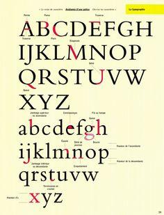 """Typo : anatomie d'une police de caractères Extrait du livre """"Les fondamentaux de la création graphique"""" Gavin Ambrose et Paul Harris - Édit..."""