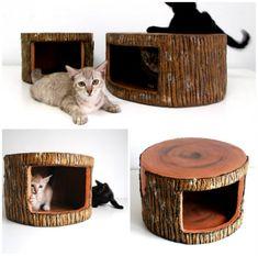 Caseta para gatos