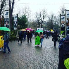 Sempre bello il #parconaturaviva anche con la #pioggia #pasquetta2016