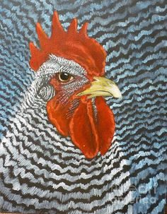 Barred Rock Rooster painting by Sherrill Hull