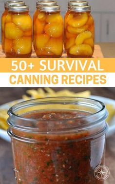 Survival Canning Recipes — Canning is probably my most favorite way of preserving food. I love saving money and this is a great way to do just that! Get a great selection of over 50 canning recipes that can be very valuable in any emergency situation Home Canning Recipes, Canning Tips, Pressure Canning Recipes, Canning Food Preservation, Preserving Food, Konservierung Von Lebensmitteln, Survival Food, Survival Tips, Survival Skills
