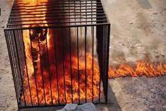 Elevenen égetett el 43 embert az Iszlám Állam Irakban