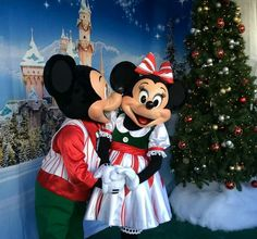2014 Mickey & Minnie