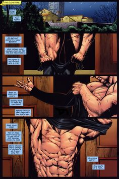 Nightwing - The Great Leap - Peter J Tomasi, Don Kramer - read it!