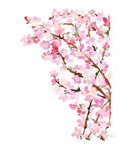 Cherry Blossoms Watercolor Art Print