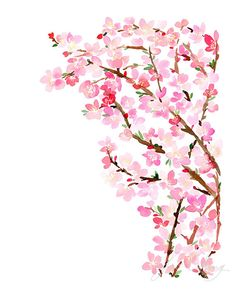 Cherry Blossoms Watercolor Art Print by YaoChengDesign on Etsy