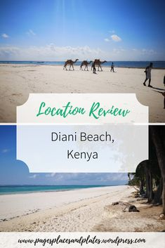 With over 11 miles of gorgeous white sand beach, Diani Beach in Kenya is a must-visit location for any beach fans out there. Best Places To Travel, Cool Places To Visit, Places To Go, Amazing Destinations, Travel Destinations, Diani Beach Kenya, Family Holiday Destinations, The Beach Boys, Going On Holiday