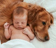 .Baby and pet dog photography