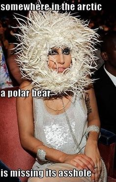 Lady Gaga....I know you look hungry girl but you didnt have to eat the ass out that bear!