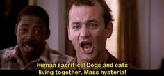 Ghostbusters | 32 Movie Quotes Guaranteed To Make You Laugh Every Time