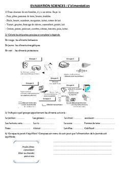 Alimentation – Ce2 – Cm1 – Cm2 – Evaluation – Pass Education