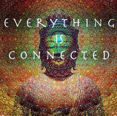 Everything is connected.