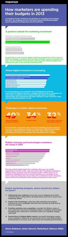 Digital Marketing - Spending in 2013