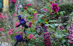 Chelsea Flower Show 2014 | Flickr - Photo Sharing!