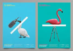 AND Film Festival Branding by Marcus McCabe | Inspiration Grid | Design Inspiration