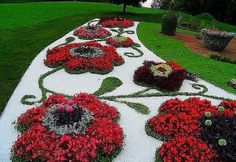 A front garden can be said as a magical garden as this is the path which guests take before they approach you. You can use your front garden to your Topiary Garden, Garden Art, Garden Design, Rocks Garden, Small Flower Gardens, Small Flowers, Flowers Garden, Colorful Flowers, Beautiful Gardens
