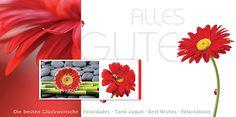#Glueckwunsch #Karte rote #Gerbera