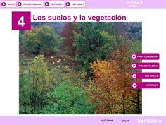 Tema 3. Suelos y vegetación by tonicontreras via slideshare