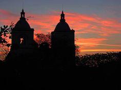 Corozal, contraluz. Foto de Jorge Barona Paniza.