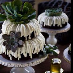 66 Best Nothing Bundt Cakes Images In 2017 Nothing Bundt