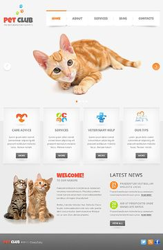 Designed by TemplateMonster.com (USD $66). Setup by Qarve.com (SGD $2,200 - $3,400). The Drupal 7 CMS is print and SEO friendly. Package includes hosting, maintenance, security, contact form, color design and 4 custom banners. Web 2.0, social media or eCommerce add-ons available. Watch demo: www.youtube.com/qarvedotcom or follow us: www.facebook.com/Qarve #drupal #cms #web #design #seo #ecommerce #socialmedia