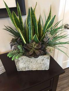 Beauty Succulents Pots Arrangement Tips 39 « Garden Decor Succulent Gardening, Container Gardening Vegetables, Succulents In Containers, Succulent Pots, Container Plants, Planting Succulents, Planting Flowers, House Plants Decor, Plant Decor