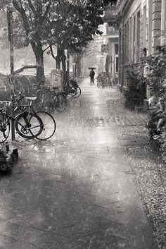 Love the light reflected everywhere because of the rain.