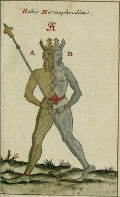 The Occult Gallery Anima And Animus, Christian Mysticism, Alchemy Art, Esoteric Art, Occult Art, Magnum Opus, Illustration, Medieval Art, Renaissance Art