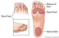 There is good news for diabetics that legitimate diabetes management and careful foot consideration can help avert foot ulcers. Blood Sugar Chart, Low Blood Sugar Levels, Blood Sugar Diet, High Blood Sugar, How To Treat Diabetes, Sugar Diabetes, Diabetes Care, Cure Diabetes, Lower Blood Sugar Naturally