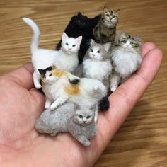 needle felted cat Awww Miniatures: Adorable Pets by Tomoko Masakage: , , . Needle Felted Cat, Needle Felted Animals, Felt Animals, Crochet Animals, Cute Baby Animals, Needle Felting Tutorials, Felt Cat, Miniature Crafts, Wet Felting