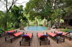 Makalali Private Game Lodge - Hoedspruit, South Africa