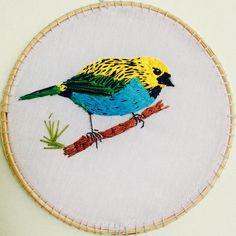 #embroiderybird #embroideryart #sairadouradinha #passaros #bordadoamão