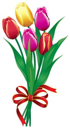 Tulipas Bouquet Primavera PNG Clip Imagem
