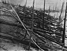This photo shows trees felled from a powerful aerial meteorite explosion. It was taken during Leonid Kulik's 1929 expedition to the Tunguska impact event in Siberia in Credit: Kulik Expedition Cosmos, Carl Sagan, Natural Phenomena, Natural Disasters, Impact Event, Empire, Hiroshima, Cultura Pop, Geology