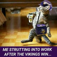 Are you true Vikes Fan? This Vikings gear for you! Tap link and get yours now! Football Rules, Best Football Team, Football Season, Viking Meme, Viking Quotes, Minnesota Vikings Football, Gym Humor, Nfl