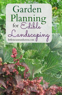 Garden Planning for Edible Landscaping!