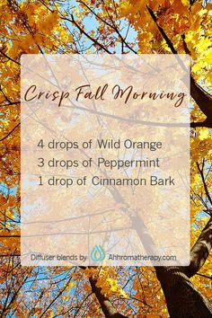 Welcome Autumn with this energizing and uplifting fall diffuser blend.