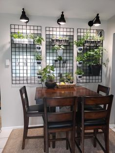 Indoor Garden Wall Using LED grow lights, retail display stands as a backboard for hanging plants us Room With Plants, House Plants Decor, Living Room Decor, Bedroom Decor, Dining Area, Kitchen Dining, Kitchen Herbs, Indoor Garden, Herb Garden