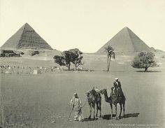 old vintage photos of egypt -Giza Pyramids and Tombs of Bedouins Old Pictures, Old Photos, Vintage Photos, Old Egypt, Ancient Egypt, Le Nil, Library Of Alexandria, Terra Nova, Gizeh
