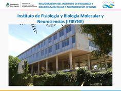 Instituto de Fisiología y Biología Molecular y Neurociencias (IFIBYNE), un nuevo orgullo para el campo de la Ciencia - http://www.mincyt.gob.ar/noticias/la-presidenta-inauguro-nueva-sede-del-instituto-de-fisiologia-biologia-molecular-y-neurociencias-11664