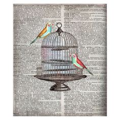 Newsprint Birdcage Silhouette Canvas Print.