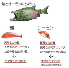 Japanese Language Learning, Food Facts, Useful Life Hacks, Food Illustrations, Wise Quotes, Have Some Fun, No Cook Meals, Trivia, Cool Words