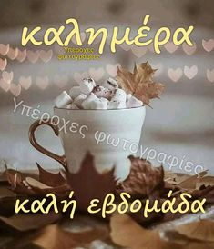 Good Morning, Pictures, Buen Dia, Bonjour, Good Morning Wishes