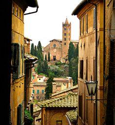 Scenes from Siena
