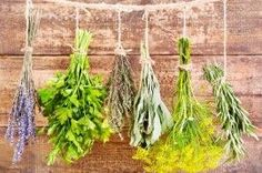 Save Your Summer Herbs Now! Air-drying is a simple, aromatic way to enjoy herbs year-round. Spices And Herbs, Fresh Herbs, Herb Garden, Garden Art, Garden Ideas, Natural Living, Korn, Plant Hanger, Asparagus