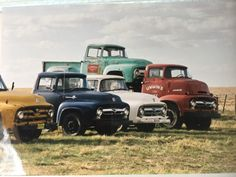 Gaggle of 2nd gen Ford trucks