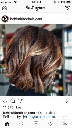 50 Inspiring Fall Hair Colors Ideas That Trending In 2019 So lon. 50 Inspiring Fall Hair Colors Ideas That Trending In 2019 So long, Summer! The leaves are changing, and so should your hair! Changing your hair color to capture the beauty […] color ideas Hair Color Ideas For Brunettes Short, Hair Color For Women, Hair Color And Cut, Highlights For Short Hair, Color For Short Hair, Bob Hair Color, New Hair, Your Hair, Medium Hair Styles