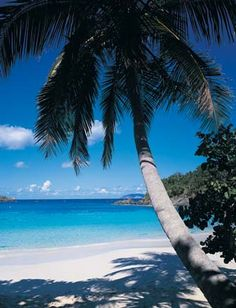 Caneel Bay in the Caribbean - St. John