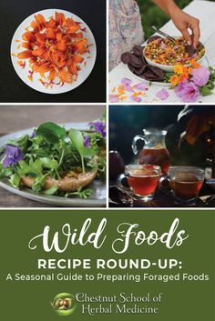 Our Favorite Wild Foods Recipes ~ A Seasonal Guide // Chestnut School of Herbal Medicine  #herbalism #herbalmedicine #wildfoods #foraging #recipes #herbs
